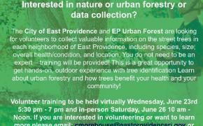 Tree Count Flyer