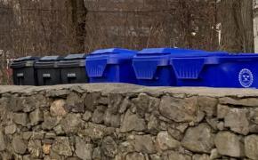 Trash and Recycle Carts